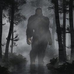 Big Foot in Dark Forest